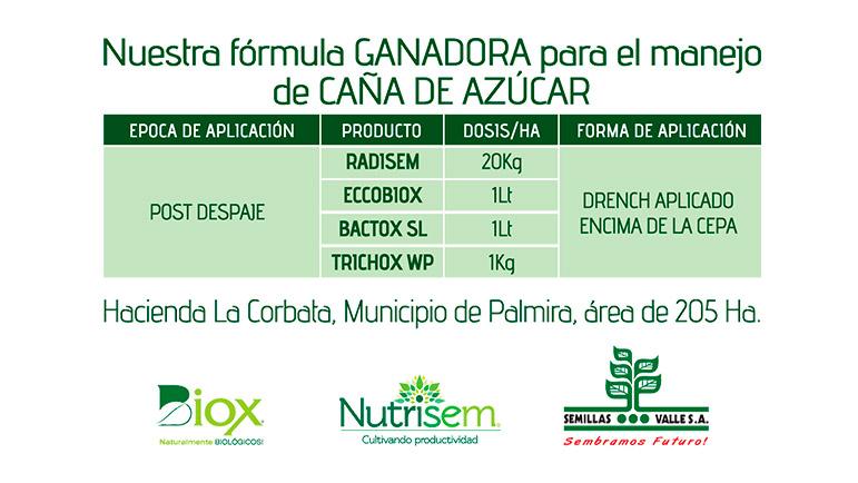 Nuestra fórmula ganadora para el manejo de la caña de azúcar