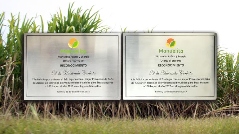 Reconocimiento a la calidad y alta productividad en nuestras cosechas